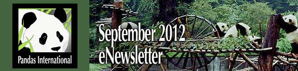 Pandas International eNewsletter