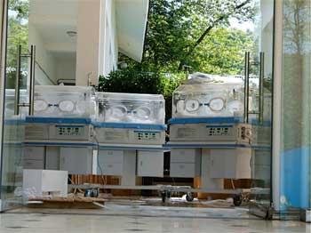 Regents safely delivered to Bifengxia