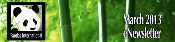 Pandas International eNewsletter