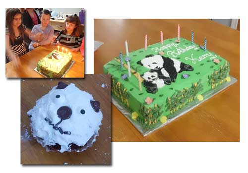 Kerry's Panda Birthday Party