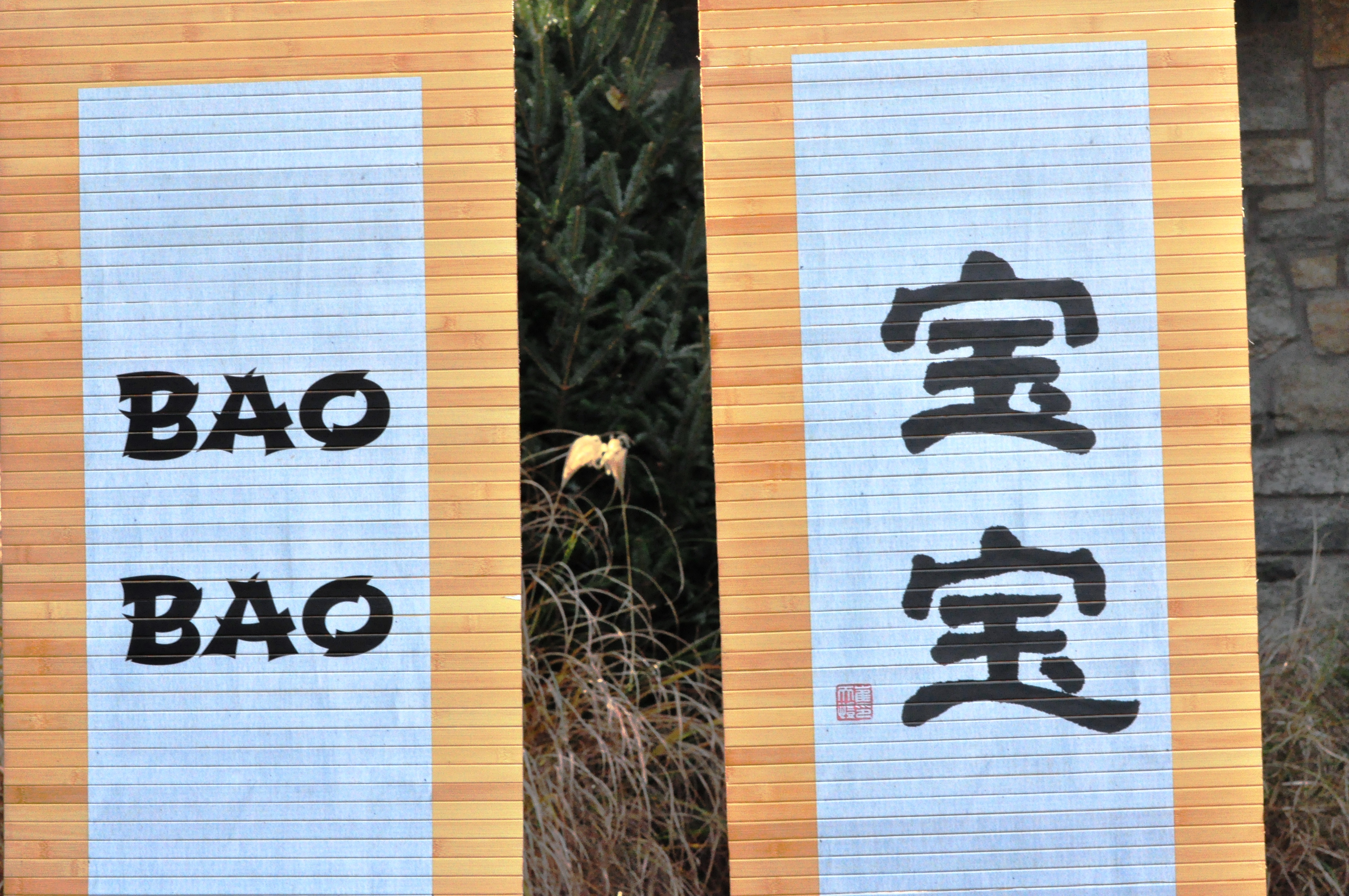 Bao Bao's Name