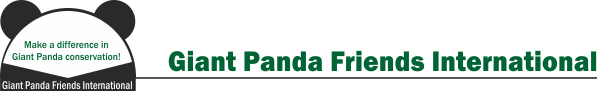 Giant Panda Friends International Logo