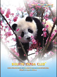 Wolong Panda Club Book December 2012