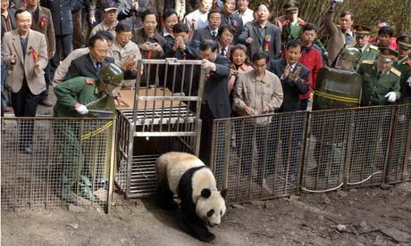 Xiang release
