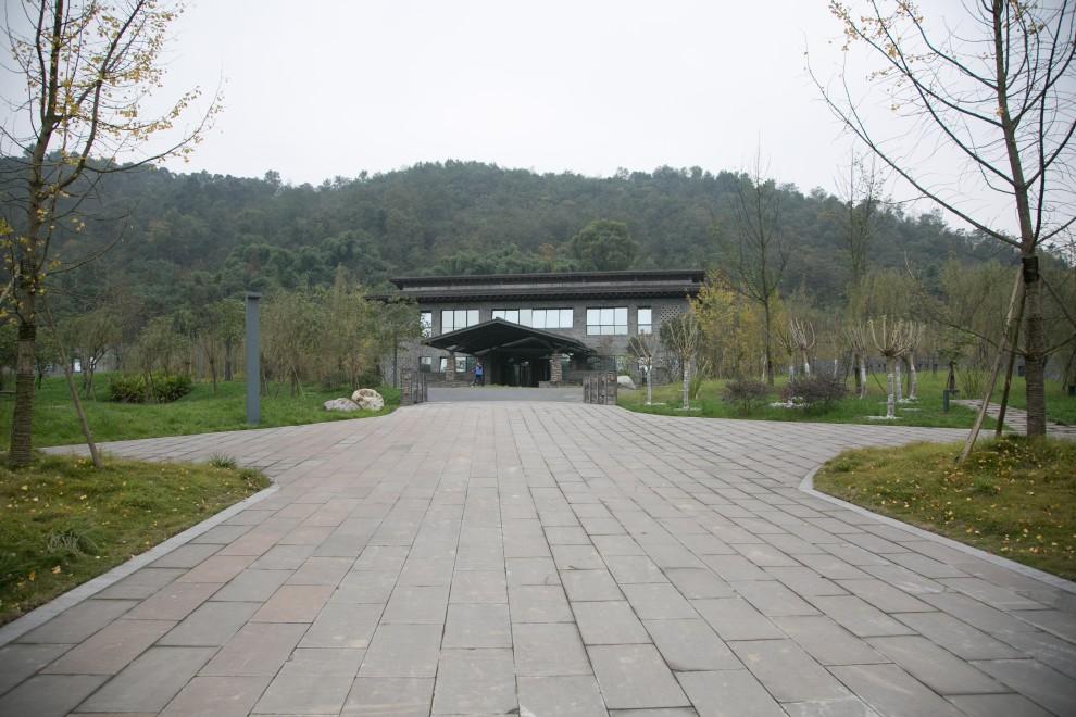 China2013-DJY--8243