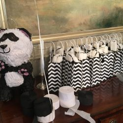 taylor panda decorations 2