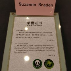 Pandas International Award